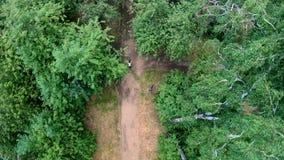 Ideia aérea da ciclagem no parque Vertical, invertido vídeos de arquivo