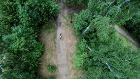 Ideia aérea da ciclagem no parque Vertical, invertido filme