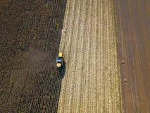 Ideia aérea da colheita mecanizada no campo de milho Imagens de Stock Royalty Free