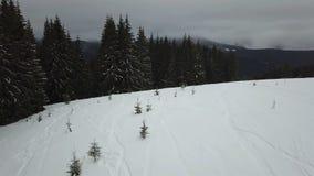 Ideia aérea da descida do freeride para esquiadores e snowboarders video estoque