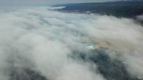 Ideia aérea da névoa e do litoral de Califórnia do norte vídeos de arquivo
