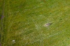 Ideia aérea da paisagem com grama verde e cores no campo com uma estrada rural e um cargo a que os fios vão nave foto de stock royalty free