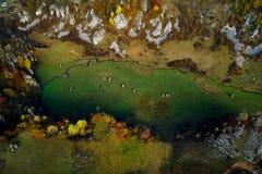 Ideia aérea da paisagem da montanha com névoa da manhã do outono imagem de stock