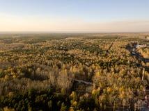Ideia aérea da paisagem na floresta com verde e o amarelo fotos de stock royalty free
