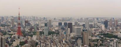 Ideia aérea da skyline do Tóquio Fotos de Stock Royalty Free
