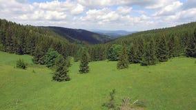 Ideia aérea das horas de verão nas montanhas perto da montanha de Czarna Gora no Polônia Floresta e nuvens do pinheiro sobre o cé video estoque