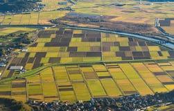 Ideia aérea de campos agrícolas no campo de Japão no sp imagens de stock royalty free