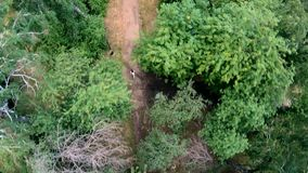 Ideia aérea de movimentar-se no parque Vertical, invertido vídeos de arquivo