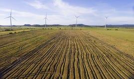 Ideia aérea de um campo colhido do arroz fotos de stock