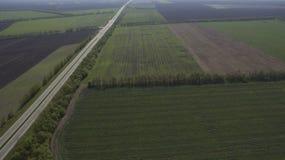Ideia aérea de um campo de cima de na primavera fotos de stock