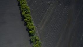 Ideia aérea de um campo de cima de na primavera imagem de stock royalty free