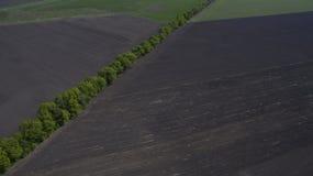 Ideia aérea de um campo de cima de na primavera imagens de stock