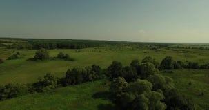 Ideia aérea de uma paisagem ensolarada do russo video estoque