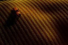 Ideia aérea do campo com fileiras da colheita ou vegetais e trator crescentes que ploughing a Por do sol ou luz do nascer do sol Imagem de Stock Royalty Free