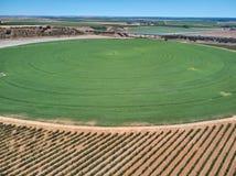 Ideia aérea do campo da colheita com o sistema de extinção de incêndios circular da irrigação do pivô fotos de stock royalty free