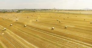 Ideia aérea do campo de trigo colhido com os pacotes do feno no campo Vista da estrada com condução da carga na vídeos de arquivo
