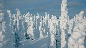 Ideia aérea do inverno frio com lote da neve e do céu azul Paisagem do inverno em Finlandia filme