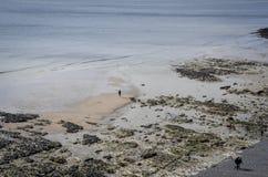Ideia aérea do litoral de East Sussex, Reino Unido imagens de stock royalty free