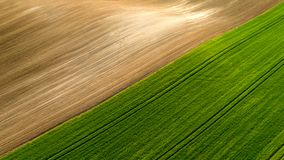 Ideia aérea do teste padrão agrícola dos campos nas horas de verão fotografia de stock royalty free