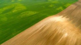 Ideia aérea do teste padrão agrícola dos campos nas horas de verão foto de stock
