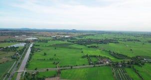 Ideia aérea dos campos com vários tipos de agricultura e de canal da irrigação em Tailândia rural video estoque