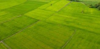 Ideia aérea dos campos com vários tipos de agricultura em rural fotografia de stock