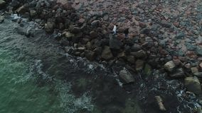Ideia aérea dos pares que andam em uma praia rochoso vídeos de arquivo