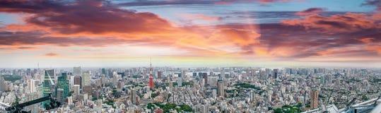 Ideia aérea panorâmico do por do sol surpreendente da skyline do Tóquio Imagem de Stock Royalty Free