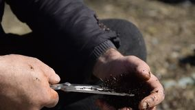A ideia ascendente próxima das mãos do homem abre e limpa ouriços-do-mar video estoque