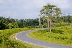 Ideia bonita da luz do sol em um campo em uma estrada rural foto de stock royalty free