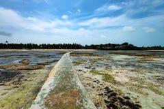 Ideia bonita da maré baixa, 'maré baixa' do mar em Zanzibar, África fotografia de stock royalty free