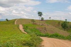 Ideia bonita da paisagem rural Foto de Stock