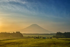 A ideia bonita de Monte Fuji e de campo, esta montanha é um fam Fotos de Stock