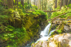 Ideia cênico da área das quedas da água do duc do solenoide no parque nacional olímpico do mt, Washington, EUA Imagem de Stock