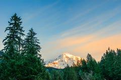 Ideia cênico da parte superior do padeiro do mt, coberta com a neve, Washington, EUA Imagem de Stock