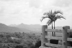 Ideia cênico preto e branco do recurso em Khao Yai Fotos de Stock