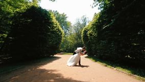 Ideia completo dos pares lindos felizes de recém-casados que dançam no jardim bonito video estoque