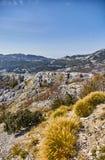 Ideia da natureza de Montenegro da montanha de Lovcen Parque nacional de Lovcen verão imagem de stock royalty free
