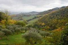 Ideia da natureza do outono de Úmbria em Itália Imagens de Stock Royalty Free