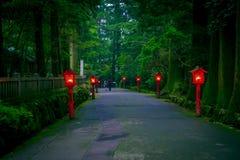 A ideia da noite da aproximação ao santuário de Hakone em uma floresta do cedro com muitos lanterna vermelha leve acima imagem de stock