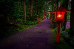 A ideia da noite da aproximação ao santuário de Hakone em uma floresta do cedro com muitos lanterna vermelha leve acima e um gran foto de stock