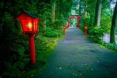 A ideia da noite da aproximação ao santuário de Hakone em uma floresta do cedro com muitos lanterna vermelha leve acima e um gran imagem de stock royalty free
