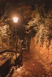 Ideia da noite do mercado do Natal Imagem de Stock
