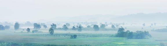 Ideia da paisagem do panorama do campo da agricultura com névoa na manhã Fotografia de Stock