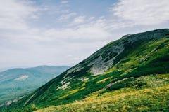 Ideia da parte superior coberto de vegetação da montanha imagens de stock