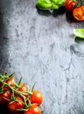 Ideia de ângulo alto do risp dos tomates no fundo da ardósia Imagem de Stock
