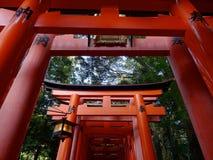 Ideia de baixo ângulo das portas vermelhas de Torii no santuário de Fushimi Inari em Kyoto foto de stock royalty free