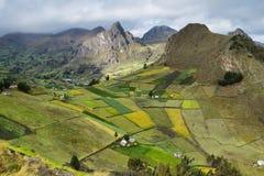 Ideia de campos coloridos do terraço Fotos de Stock