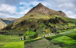 Ideia de campos coloridos do terraço Imagem de Stock