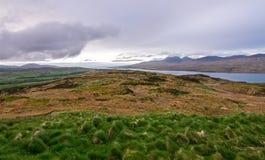 Ideia de campos do upland em Escócia imagens de stock royalty free